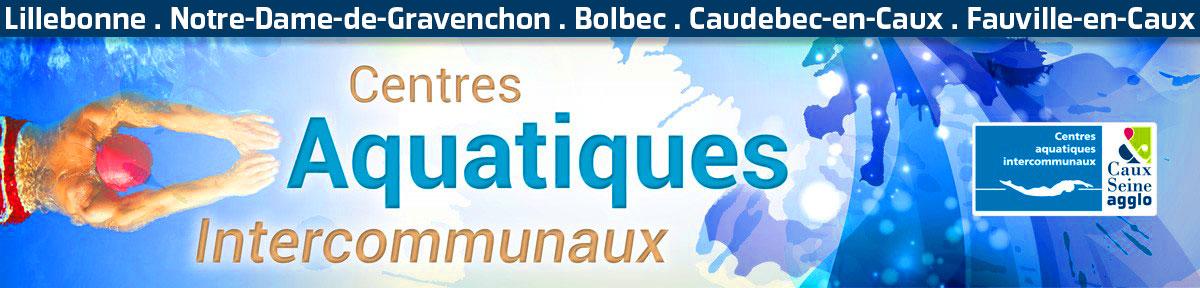 Caux seine agglo les centres aquatiques et les piscines for Piscine gravenchon