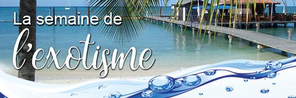 Semaine de l exotisme du lundi 13 au dimanche 19 for Piscine gravenchon